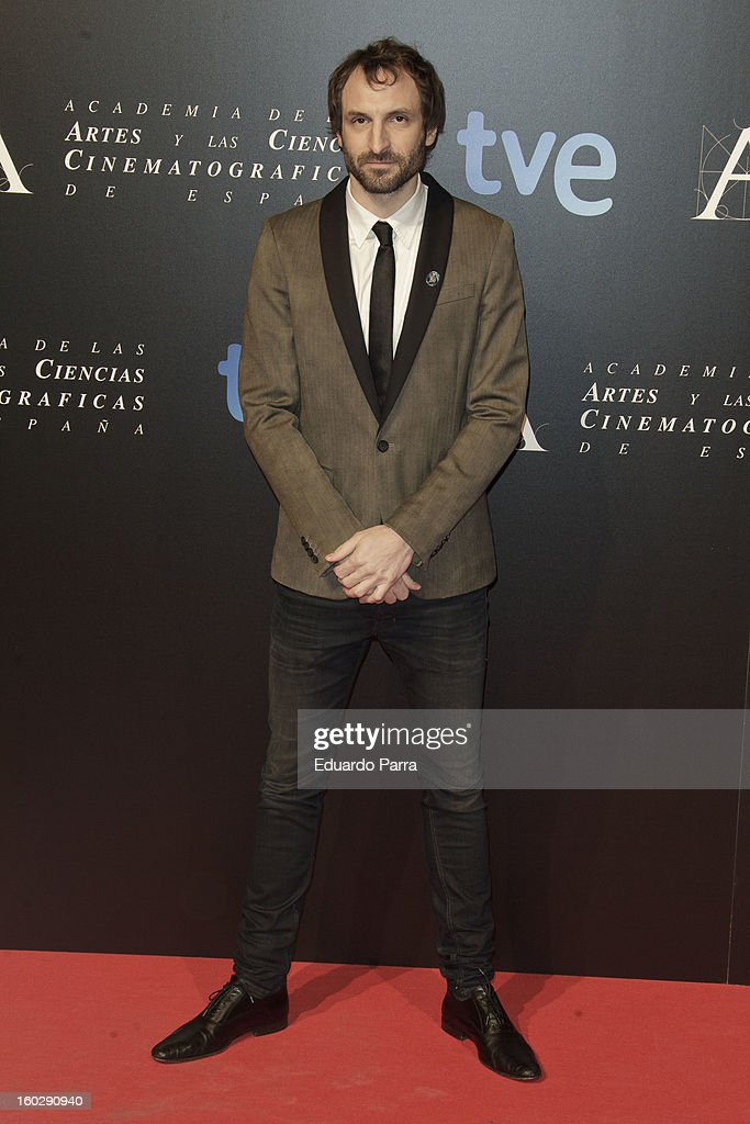 Julian Villagran attends Goya awards final candidates party photocall at El Canal theatre on January 28, 2013 in Madrid, Spain.