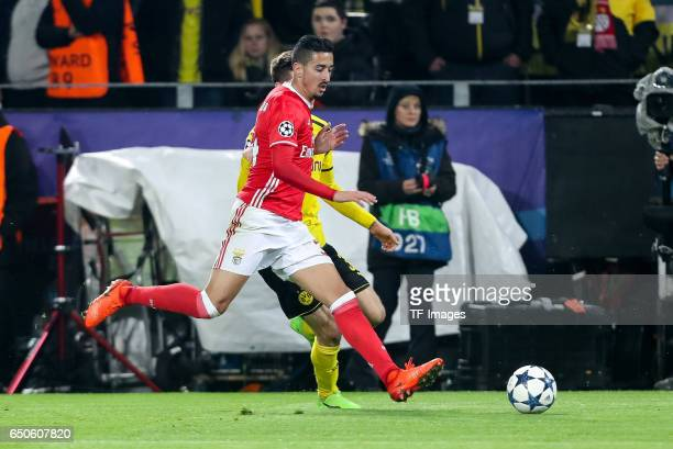 Julian Weigl of Borussia Dortmund and Andre Almeida of Benfica battle for the ball during the UEFA Champions League Round of 16 Second Leg match...