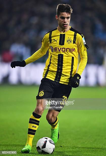 Julian Weigl of Dortmund in action during the Bundesliga match between Werder Bremen and Borussia Dortmund at Weserstadion on January 21 2017 in...