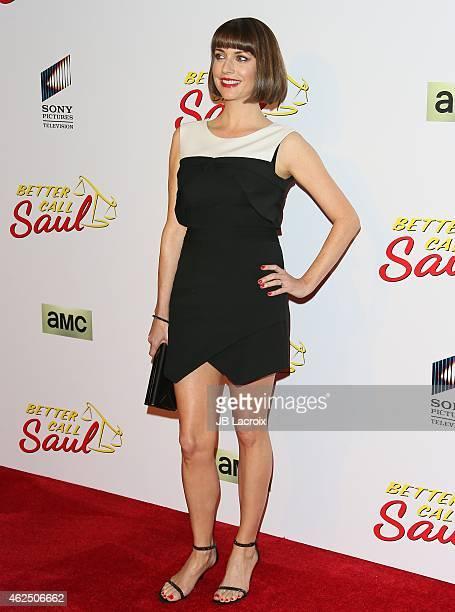 Julie Ann Emery attends the 'Better Call Saul' Los Angeles Series Premiere Screening held at Regal Cinemas LA Live on January 29 2015 in Los Angeles...