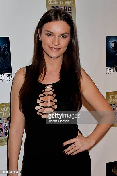 Julie Barzman attends the 'Not Another Celebrity Movie' Los Angeles premiere at Pacific Design Center on January 17 2013 in West Hollywood California