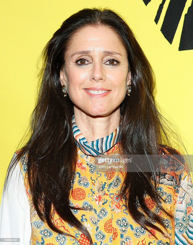 Julie Taymor attends the 'The Lion King' On Broadway 15th Anniversary Celebration at the Minskoff Theatre on November 18, 2012 in New York City.