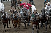 CALGARY July 15 2016 Drivers race their wagons during the Chuckwagon event of the Calgary Stampede Rodeo in Calgary Canada July 14 2016