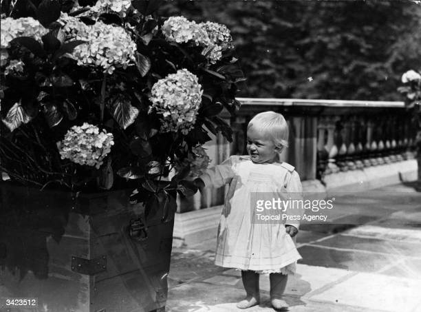 At one year old Prince Philip of Greece shows an interest in things floral