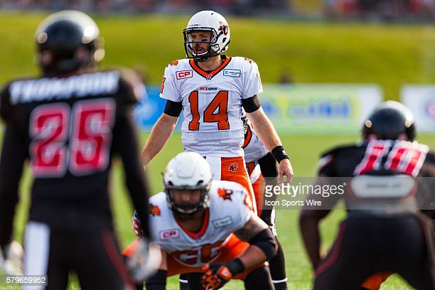 BC Lions Travis Lulay during Canadian Football League action between the BC Lions and Ottawa RedBlacks at TD Place in Ottawa ON Canada