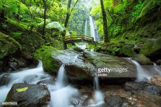 Jumog Waterfall
