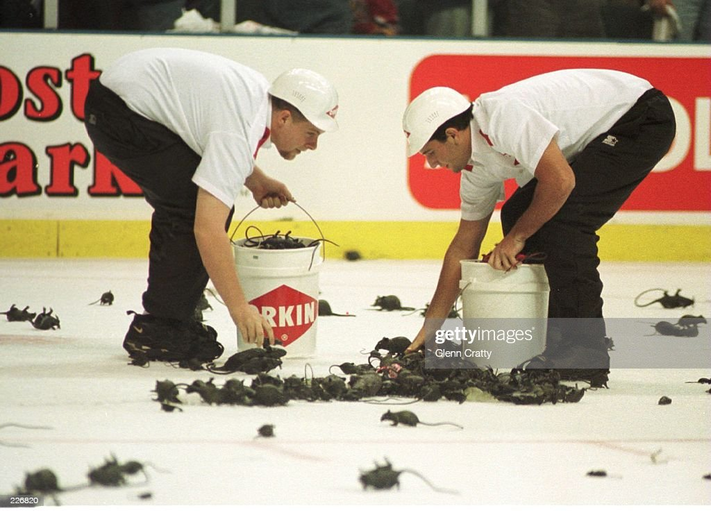 Cleanup workes clear the ice of rubber rats after Florida scored a goal during the first period of game three of the Stanley Cup Finals at Miami...