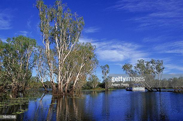 General view of boat carrying the Olympic flame during day 22 of the 2000 Sydney Olympic Torch Relay at Yellow Water in Kakadu National ParkNorthern...