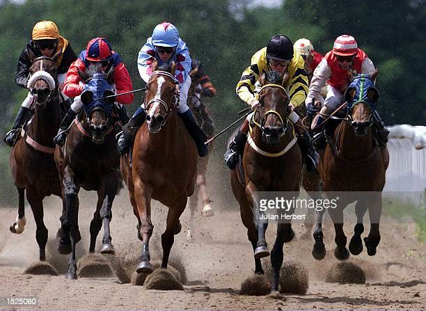 Kieren Fallon and the blinkered Aubrieta trail the leaders round the final bend at Lingfield park before coming with a late rattle to land Dvision I...