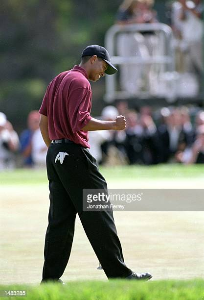Tiger Woods celebrates his final putt on the 18th hole during the 100th US Open at the Pebble Beach Golf Links in Pebble Beach CaliforniaMandatory...