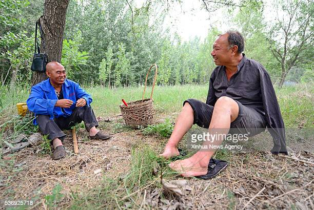 SHIJIAZHUANG June 1 2016 Jia Wenqi right and his friend Jia Haixia rest in the field in Yeli Village of Jingxing County north China's Hebei Province...