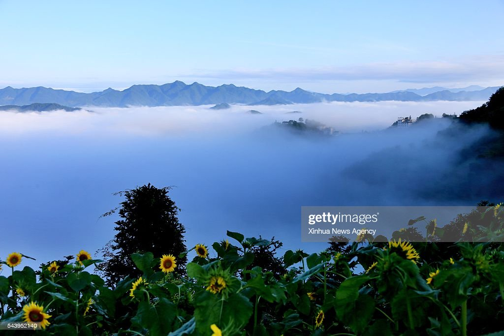 HUNAGSHAN, June 30, 2016 -- Mountains are enveloped by sea of clouds at Shitan scenic area in Huangshan City, east China's Anhui Province, June 30, 2016.