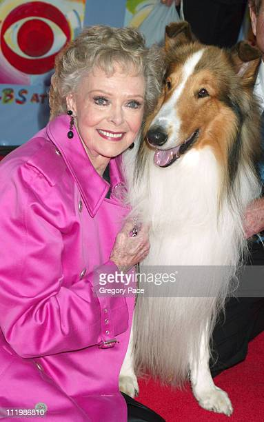 June Lockhart who starred on the TV Show 'Lassie' with Lassie