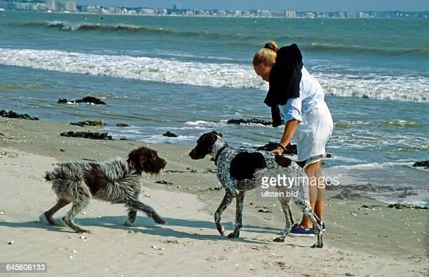 Junge blonde Frau mit zwei Hunden Deutsch Kurzhaar und Drahthaar auf Strandspaziergang