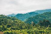 Foggy jungle hills.