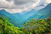 Photo of mountain landscape covered with green jungle near Ciudad Perdida, Sierra Nevada de Santa Marta Mountains, Colombia, South America.