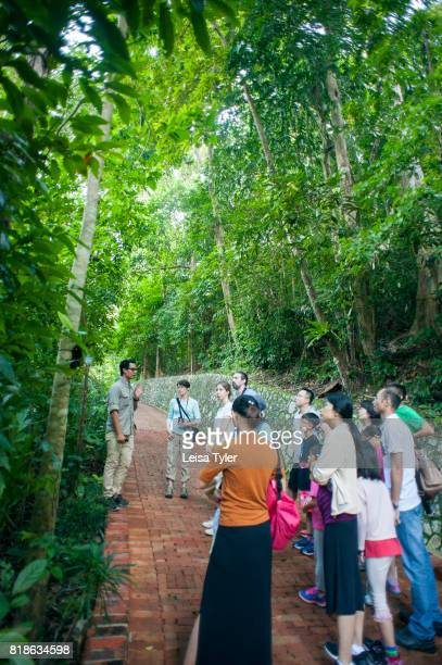 Junglewallah naturalist at the Andaman a Luxury Collection Resort taking guests for a morning tour of the hotel grounds introducing flora and fauna...