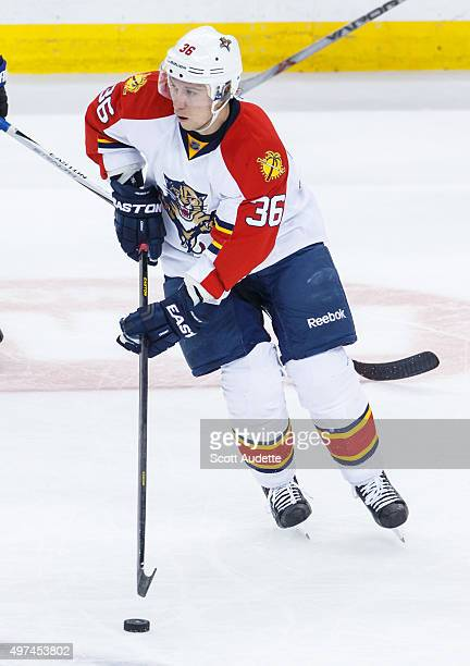 Jussi Jokinen of the Florida Panthers skates against the Tampa Bay Lightning during second period at the Amalie Arena on November 14 2015 in Tampa...