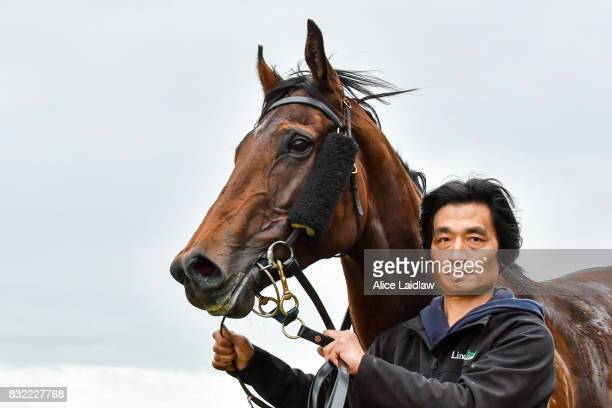 Justice Glory after winning the Spicer Thoroughbreds Handicap at Ladbrokes Park Hillside Racecourse on August 16 2017 in Springvale Australia