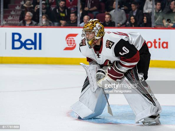 Justin Peters of the Arizona Coyotes looks on during the NHL game against the Montreal Canadiens at the Bell Centre on October 20 2016 in Montreal...