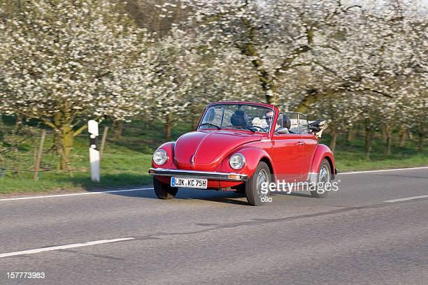 VW Volkswagen Käfer-Cabrio Kaefer, Cabriolet