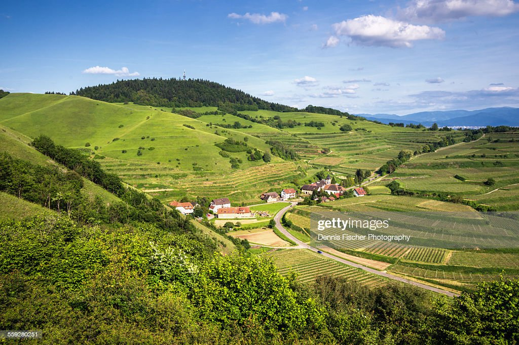 Kaiserstuhl vineyards and a town