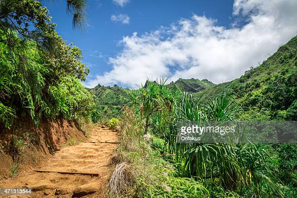 Sentier Kalalau paysage, la côte de Napali Le Parc d'État, Kauai, Hawaï