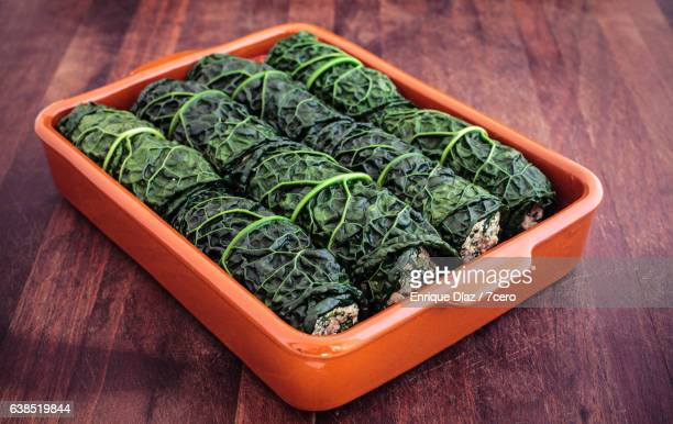 Kale Cannelloni Sparse Side View