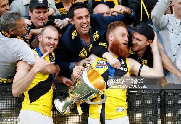 Kamdyn McIntosh Nick Vlastuin of the Tigers celebrate with former Tigers teammates Troy Chaplin and Nathan Foley during the 2017 Toyota AFL Grand...