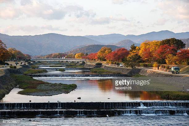 Kamo river in Autumn