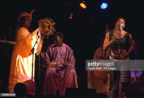 Kandia Kouyate Mali's best known Griots or 'praise singers' with her band at Whelan's music venue in Dublin Republic of Ireland The Griot tradition...