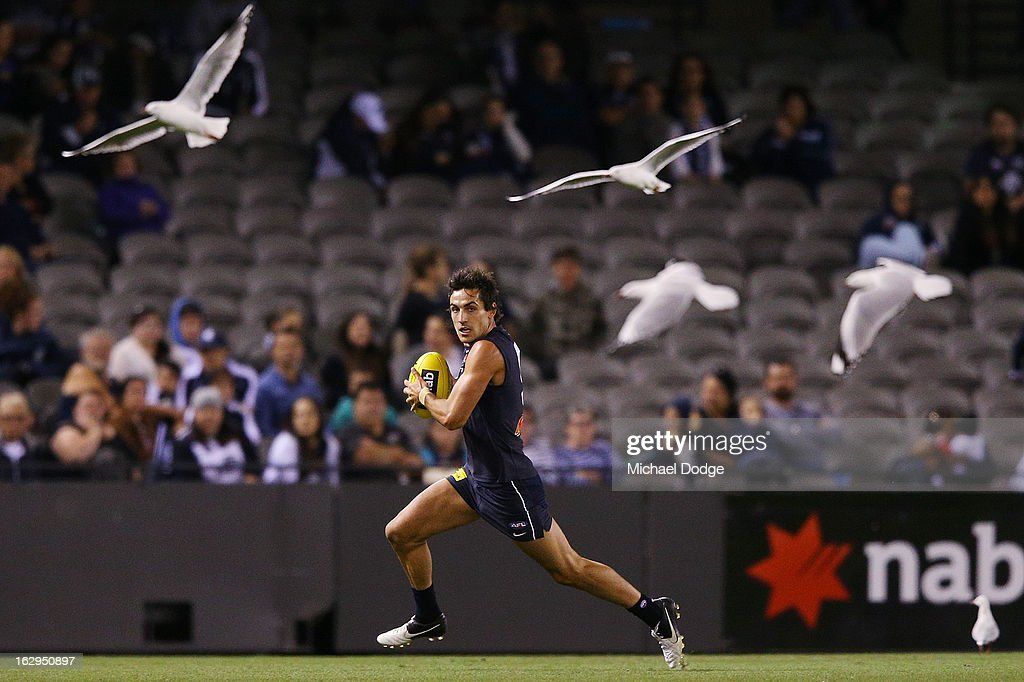 Kane Lucas of the Carlton Blues runs with the ball with seagulls during the round two AFL NAB Cup match between the Carlton Blues and the Fremantle Dockers at Etihad Stadium on March 2, 2013 in Melbourne, Australia.