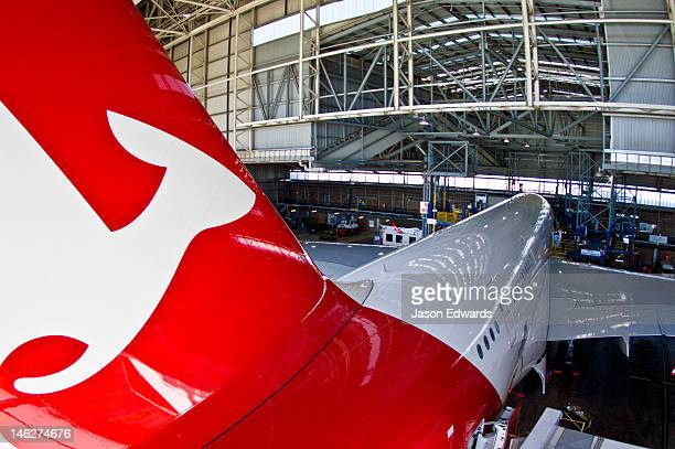 A kangaroo logo on a jet airliner parked in a hanger for repairs.