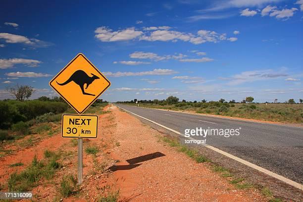 Stradale di canguro