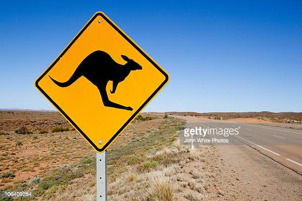 Kangaroo warning sign. Australia.