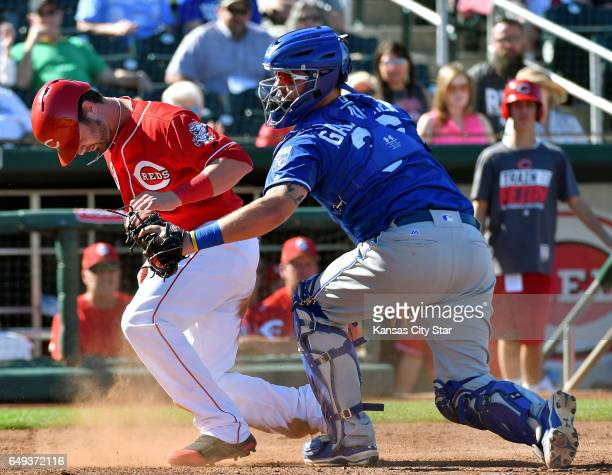 Kansas City Royals catcher Cam Gallagher tags out the Cincinnati Reds' Jesse Winker left at the plate during spring training at Goodyear Ballpark in...