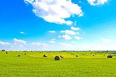 Flat land HayStacks