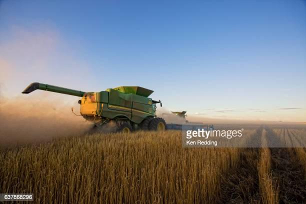 Kansas Wheat Farming