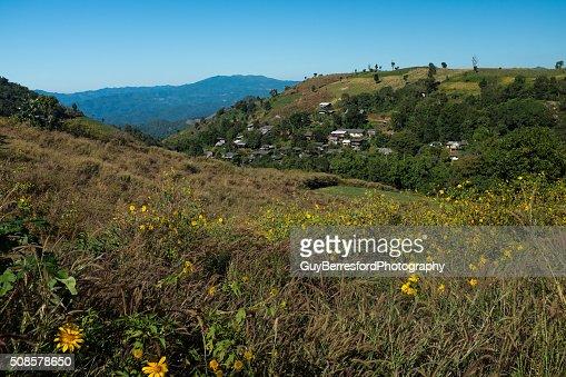 Karen village on the hillside : Bildbanksbilder
