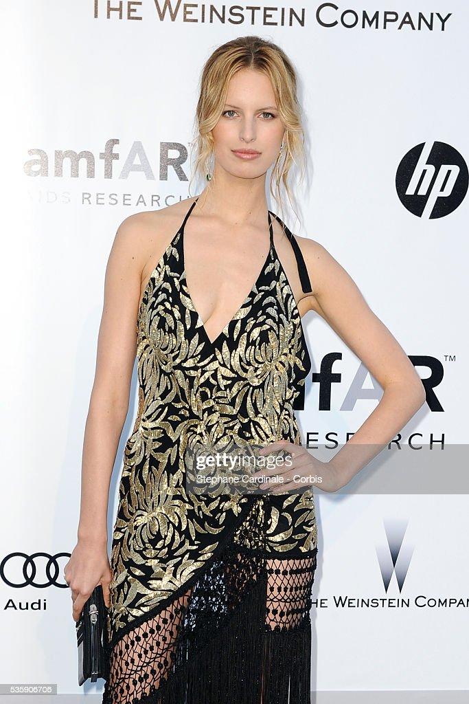 Karolina Kurkova attends the '2010 amfAR's Cinema Against AIDS' Gala.
