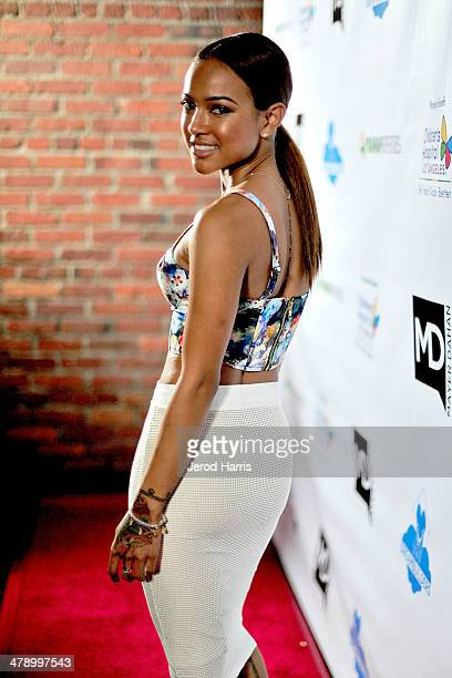 Karrueche Tran arrives at the Dream Builders Project's 'A Brighter Future For Children' benefit at HOME on March 15 2014 in Beverly Hills California