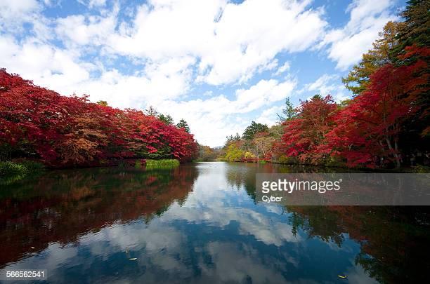 Karuizawa in autumn