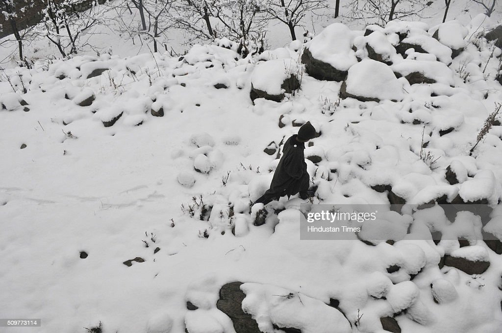 Kashmiri boy walks on a snow covered hilly terrain on February 12, 2016 on the outskirts of Srinagar, India. Incessant snowfall and rains on Thursday led to the closure of the valleys arterial Srinagar-Jammu National Highway and brought relief from a long spell of dry weather in Kashmir.