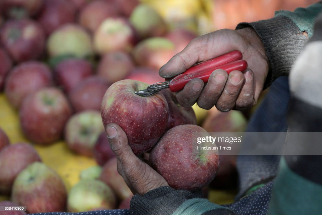 A Kashmiri farmer picks and packs fresh apples from a tree in an orchard in Budgam, on October 5, 2017 some 20 kilometers from Srinagar, India. Apples from Kashmir are famous in South Asia and the horticulture is one of the backbones of Kashmir's economy, employing thousands of people direct and indirectly. From the mid-September growers across Kashmir region start harvesting different varieties of apple, and season goes till mid-November.
