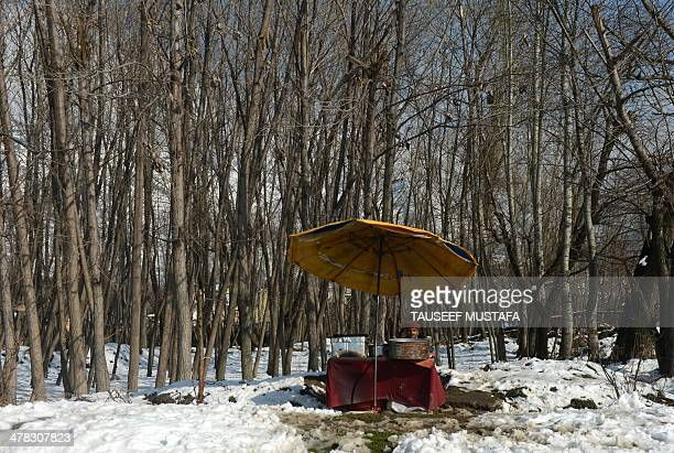 A Kashmiri fish vendor waits for customers on the banks of Dal Lake in Srinagar on March 12 2014 Avalanches triggered by unusually heavy snowfall...