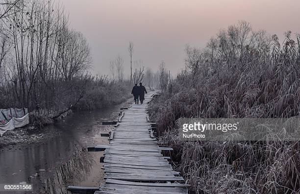 Kashmiri men walk on hoar frosted bridle path in sub zero temperatures at the floating vegetable market in Dal Lake on December 26 2016 in Srinagar...
