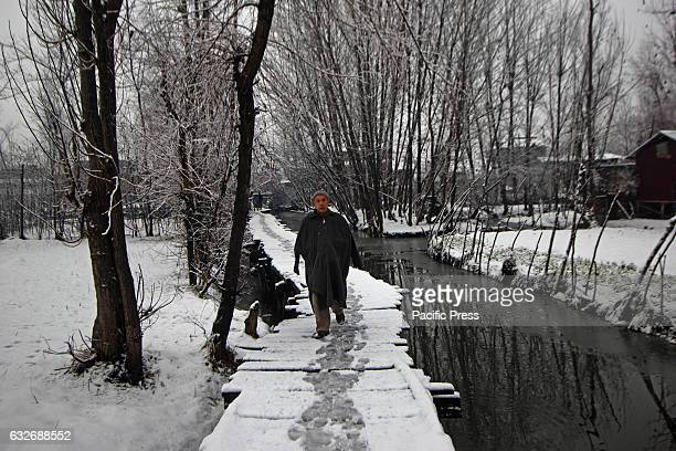 Kashmiri Muslim Man walking on a wooden bridge near floating market The Valley continue to received snowfall from past couple of days while the...
