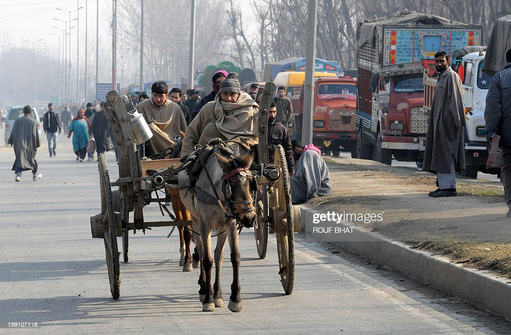 Kashmiri Muslims riding a horse cart near a protest against electricity shortages in Srinagar on January 8, 2013. Kashmir Valley continued to reel under intense cold with temperatures plummeting further as Srinagar recorded the season's lowest of minus 5.5 degrees Celsius. AFP PHOTO/ Rouf BHAT