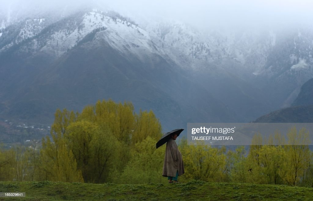 A Kashmiri shepherd uses an umbrella for shelter as rain falls at the edge of Zabarwan Forest on the outskirts of Srinagar on April 3,2013. Tourists arrivals are picking up int he Himalayan state after a sharp fall in the wake of protests over the hanging of Kashmiri activist Afzal Guru in February, for an attack on India's parliament in 2001. AFP PHOTO/Tauseef MUSTAFA