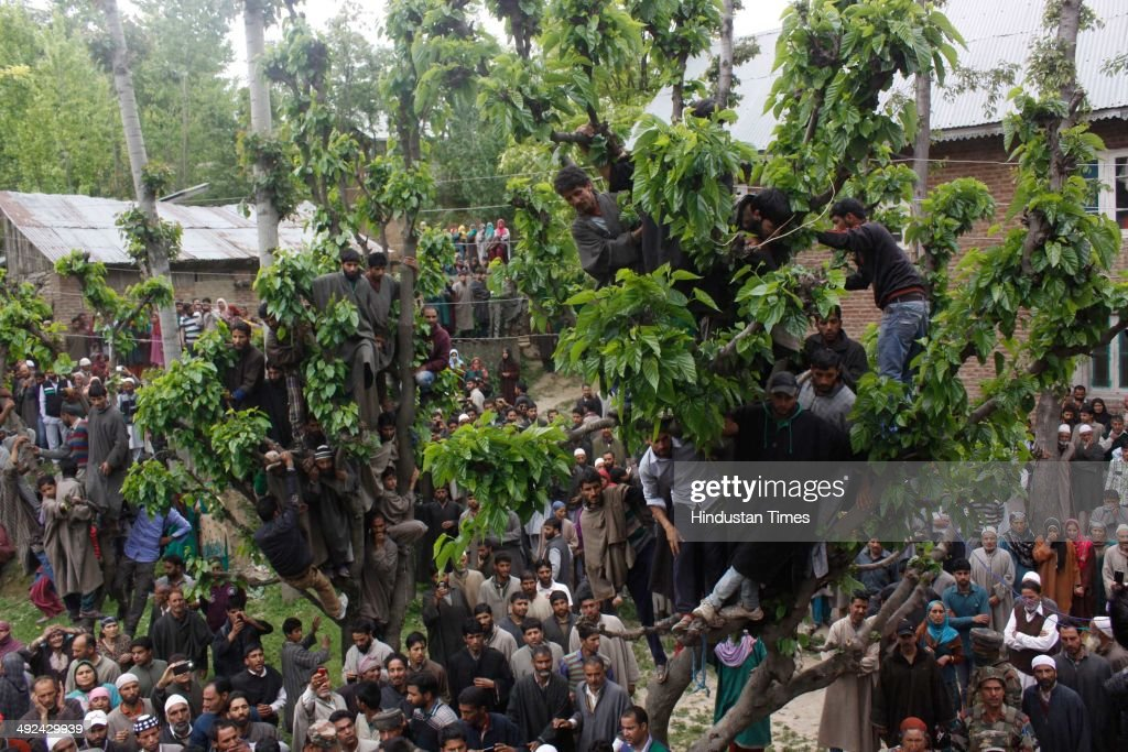 Kashmiri villages sits on a tree during the funeral procession of an Army soldier Mushtaq Ahmad Mir at Qazipora Chadoora district, on May 20, 2014 in Srinagar, India. Mushtaq Ahmad Mir, an Army soldier who was killed in an encounter at Chadoora yesterday. An Army soldier was killed and three others injured in an ongoing encounter at Chadoora in district Budgam of central Kashmir. Sources said that militants managed their escape from the spot and forces were now extending the cordon to more areas.